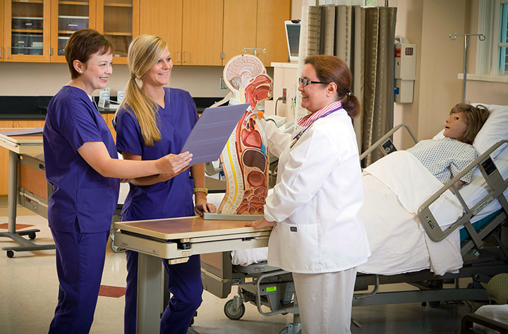 Two nursing students and an instructor look through a folder and model of the inside of a human body.